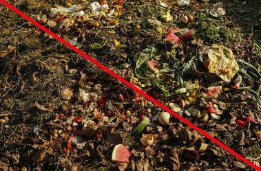 organische Abfälle gehören auf den Komposthaufen und nicht in einen DER HAMBURG BAG